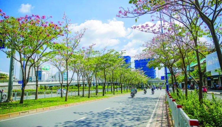 sunshine-185526115550-boi-sai-gon-lam-nang-nhieu-mua