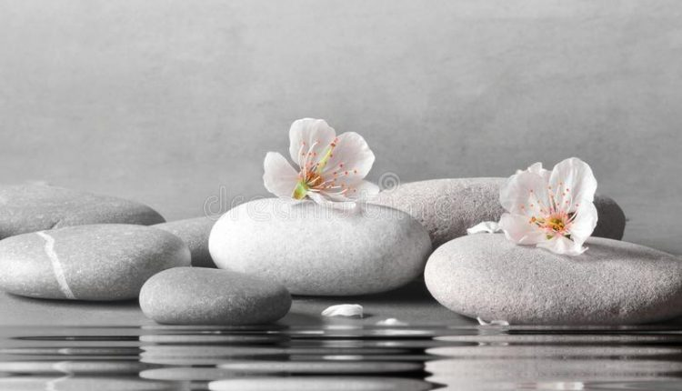 beautiful-flower-stone-zen-spa-grey-background-114798724.jpg